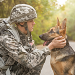 Military soldier petting his dog